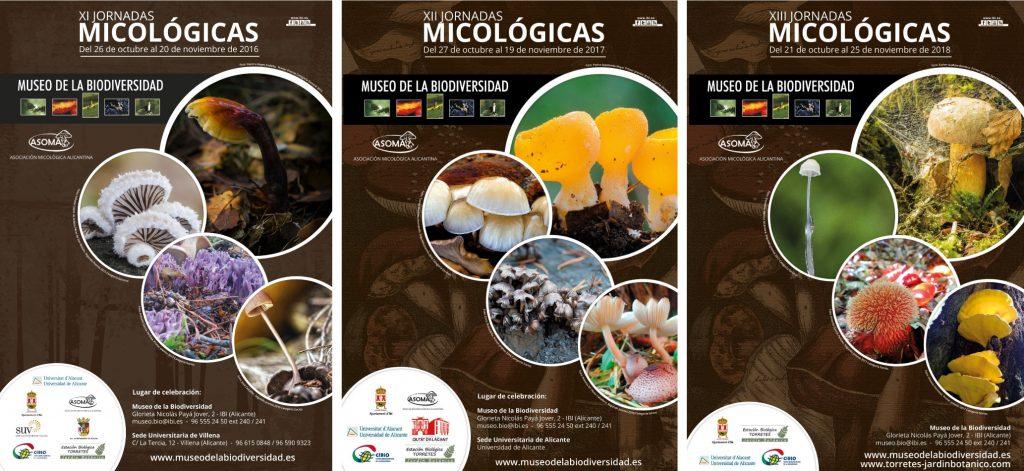 carteles micologicos